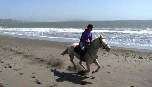 Ou faire de l'équitation sur les plages de France?