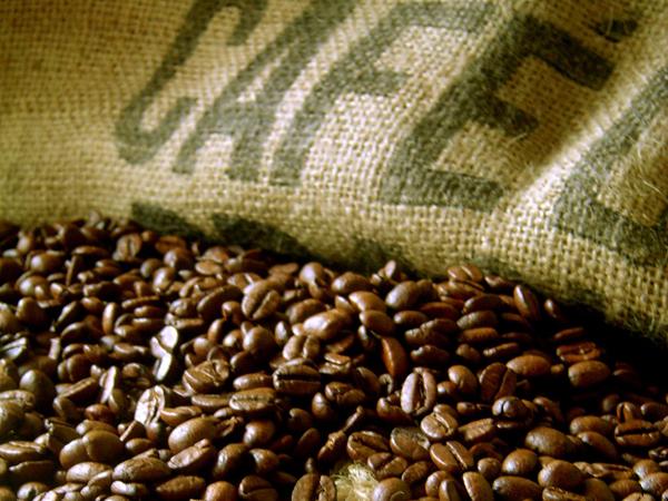 les meilleurs cafés du monde